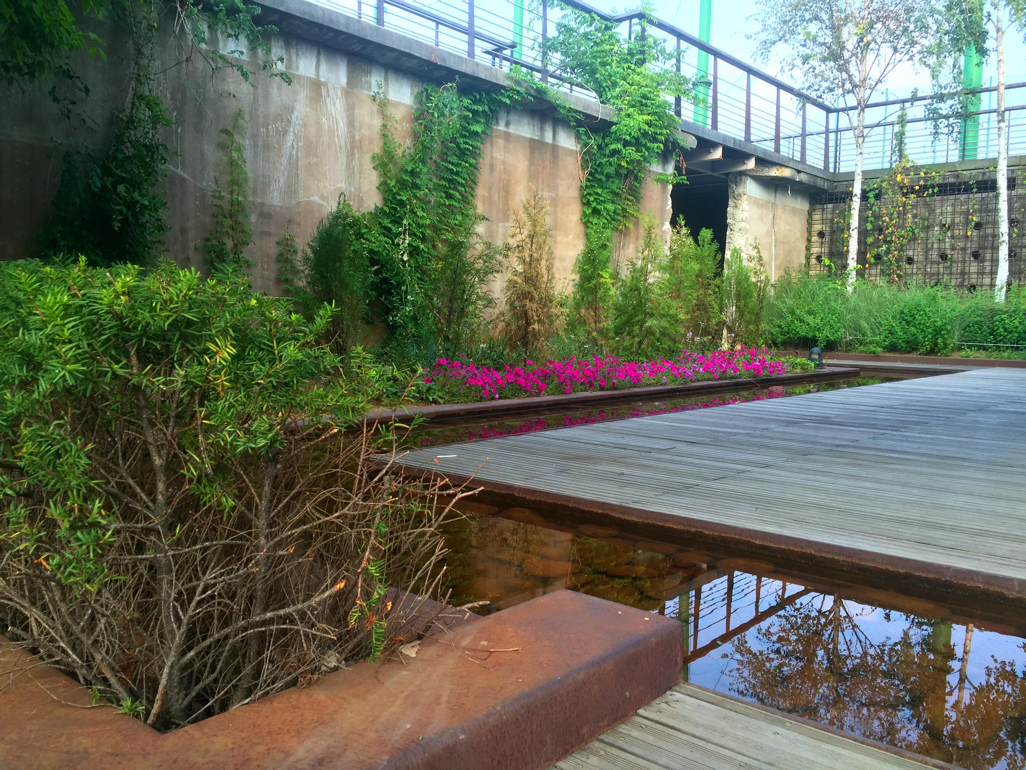 mondrian garden 5