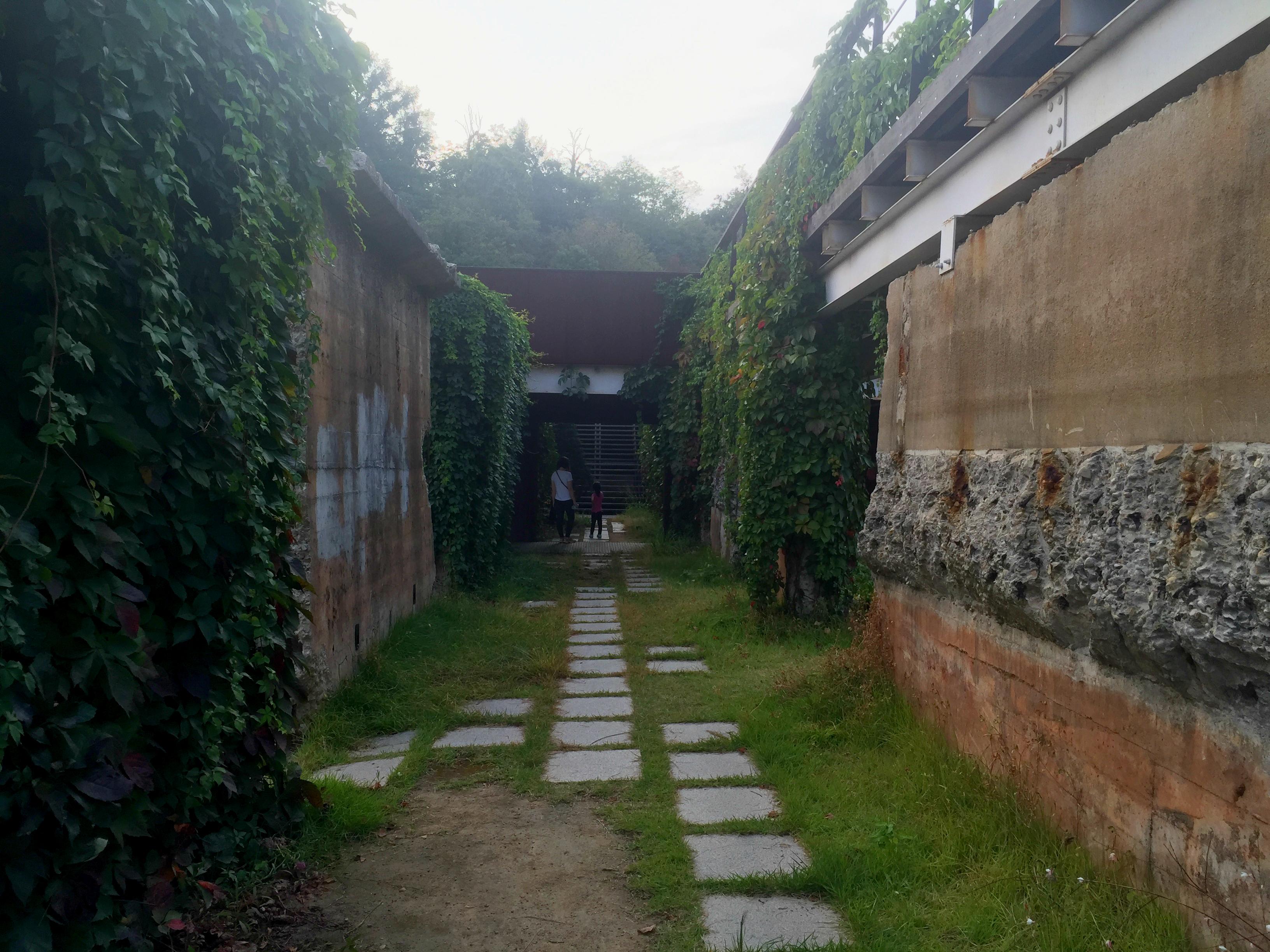 mondrian garden 6